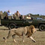 Africa 101: First-time Trip Tips